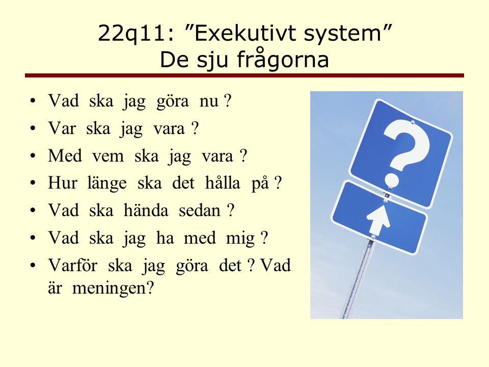 22q11: Exekutivt system De sju frågorna
