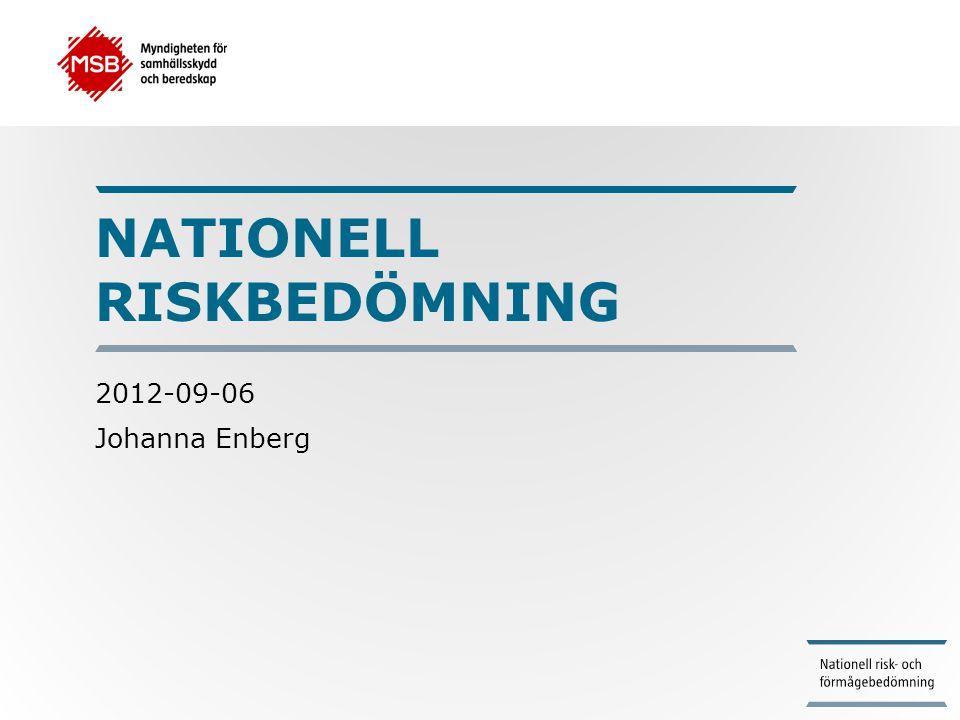 Nationell riskbedömning