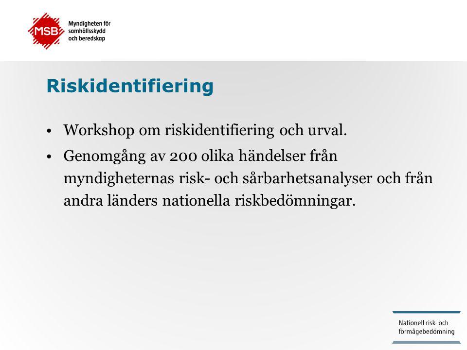 Riskidentifiering Workshop om riskidentifiering och urval.