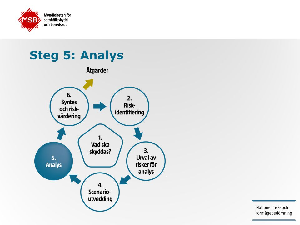 Steg 5: Analys