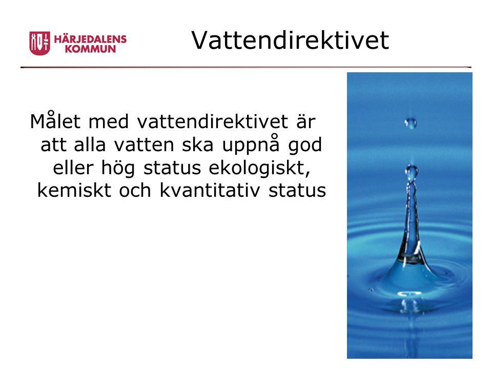 Vattendirektivet Målet med vattendirektivet är att alla vatten ska uppnå god eller hög status ekologiskt, kemiskt och kvantitativ status.