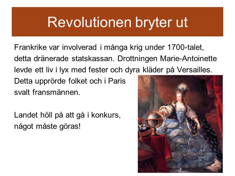 Revolutionen bryter ut