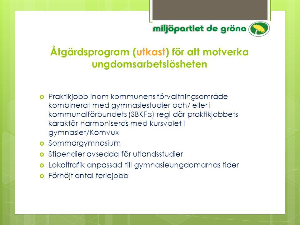 Åtgärdsprogram (utkast) för att motverka ungdomsarbetslösheten