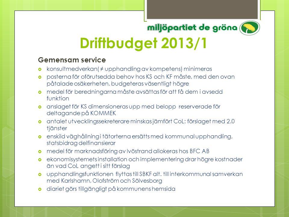 Driftbudget 2013/1 Gemensam service