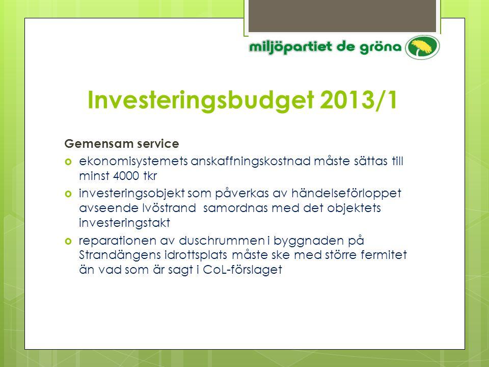 Investeringsbudget 2013/1 Gemensam service