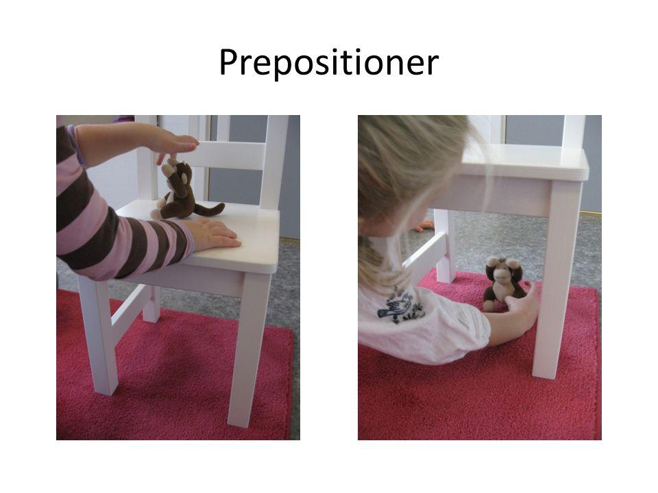 Prepositioner