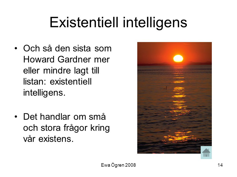 Existentiell intelligens