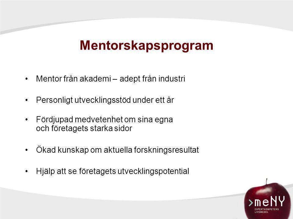 Mentorskapsprogram Mentor från akademi – adept från industri