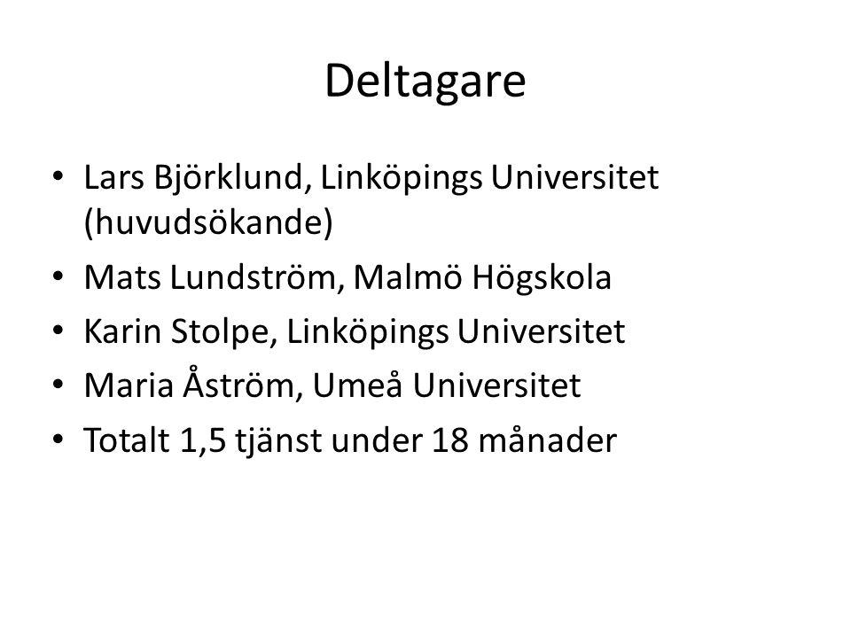 Deltagare Lars Björklund, Linköpings Universitet (huvudsökande)
