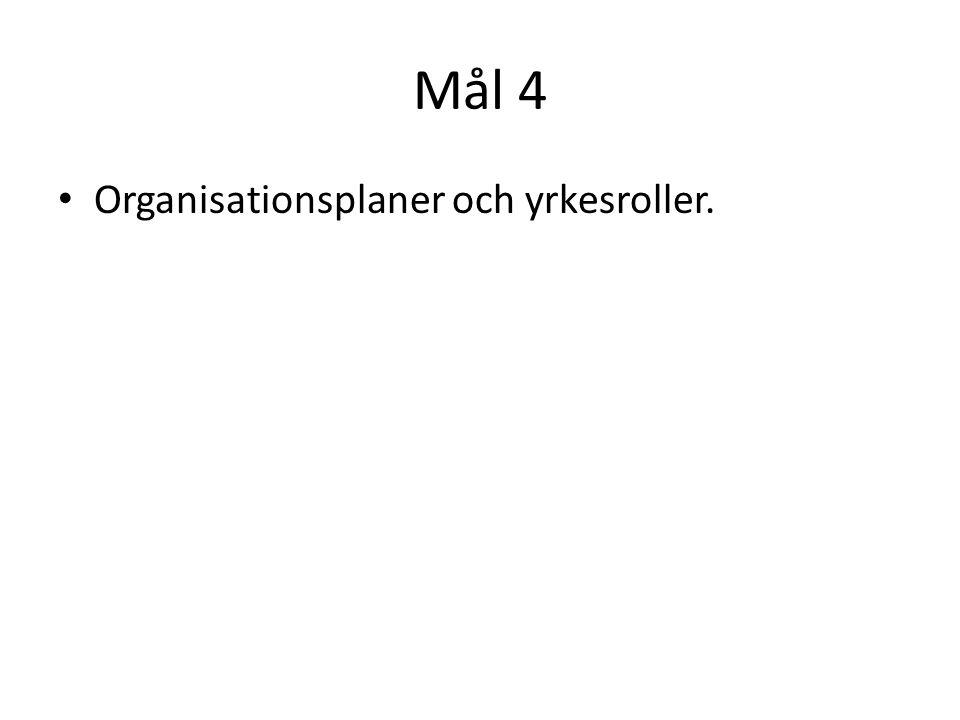 Mål 4 Organisationsplaner och yrkesroller.