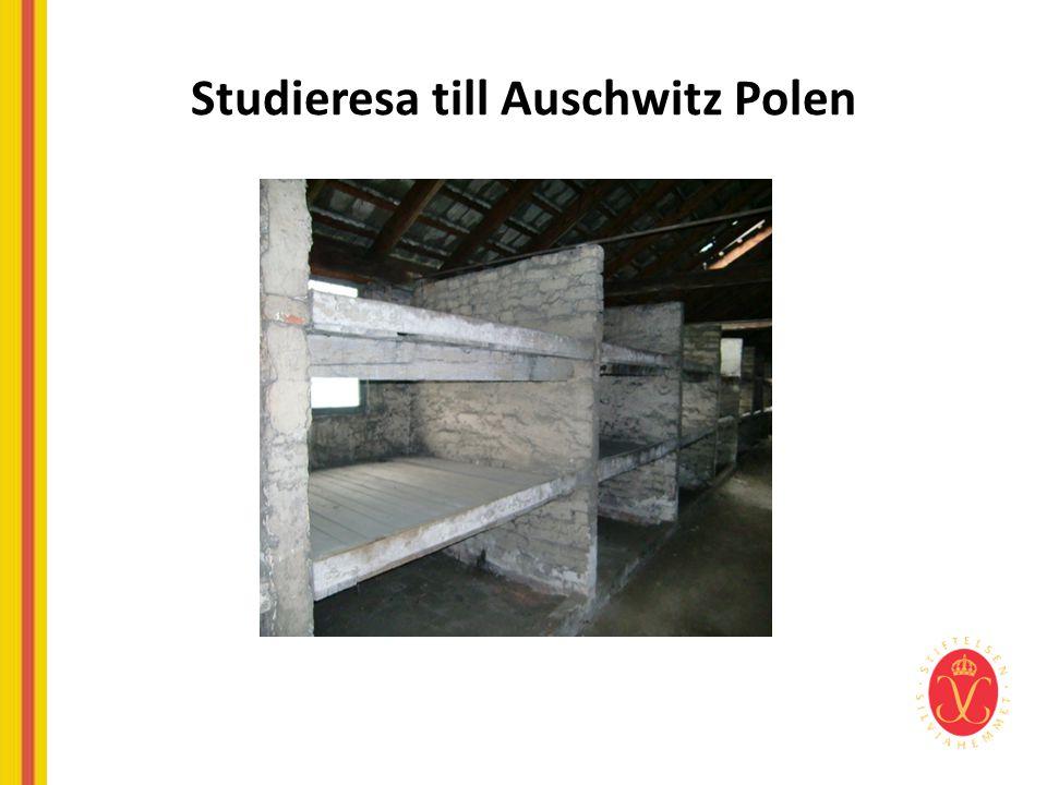Studieresa till Auschwitz Polen