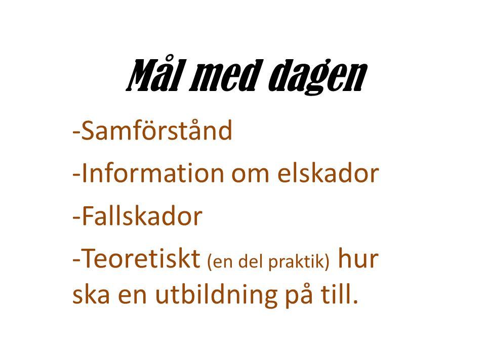 Mål med dagen -Samförstånd -Information om elskador -Fallskador