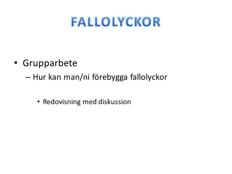 FALLOLYCKOR Grupparbete Hur kan man/ni förebygga fallolyckor