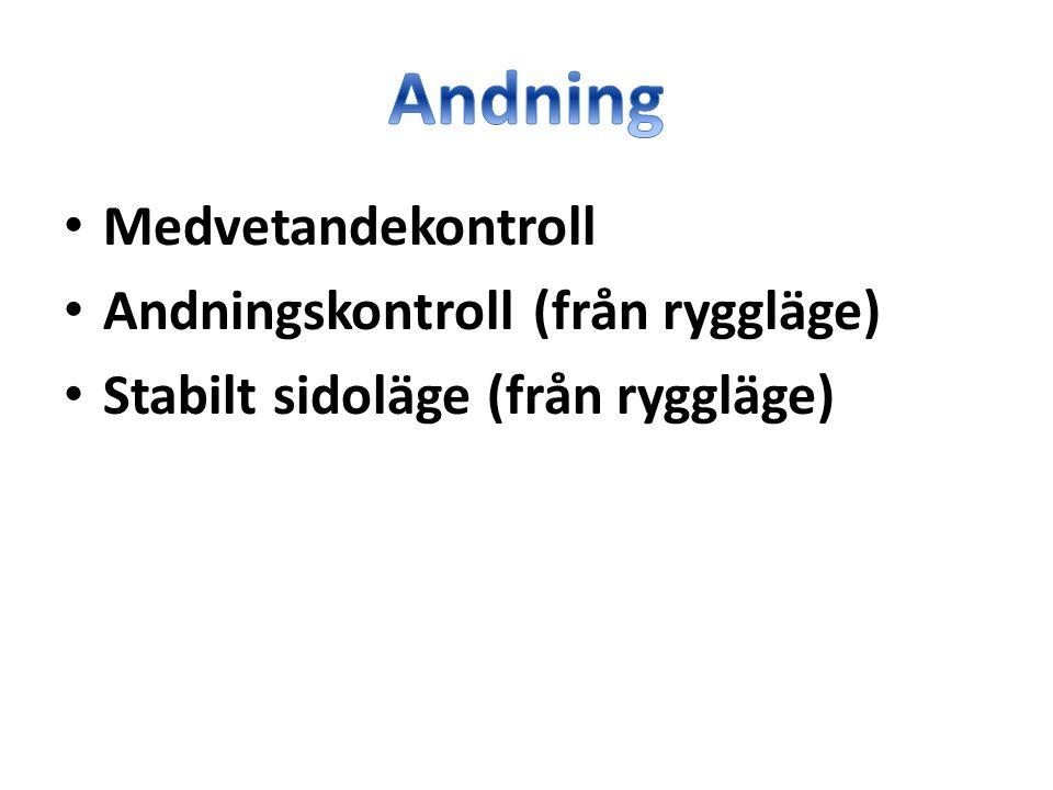 Andning Medvetandekontroll Andningskontroll (från ryggläge)