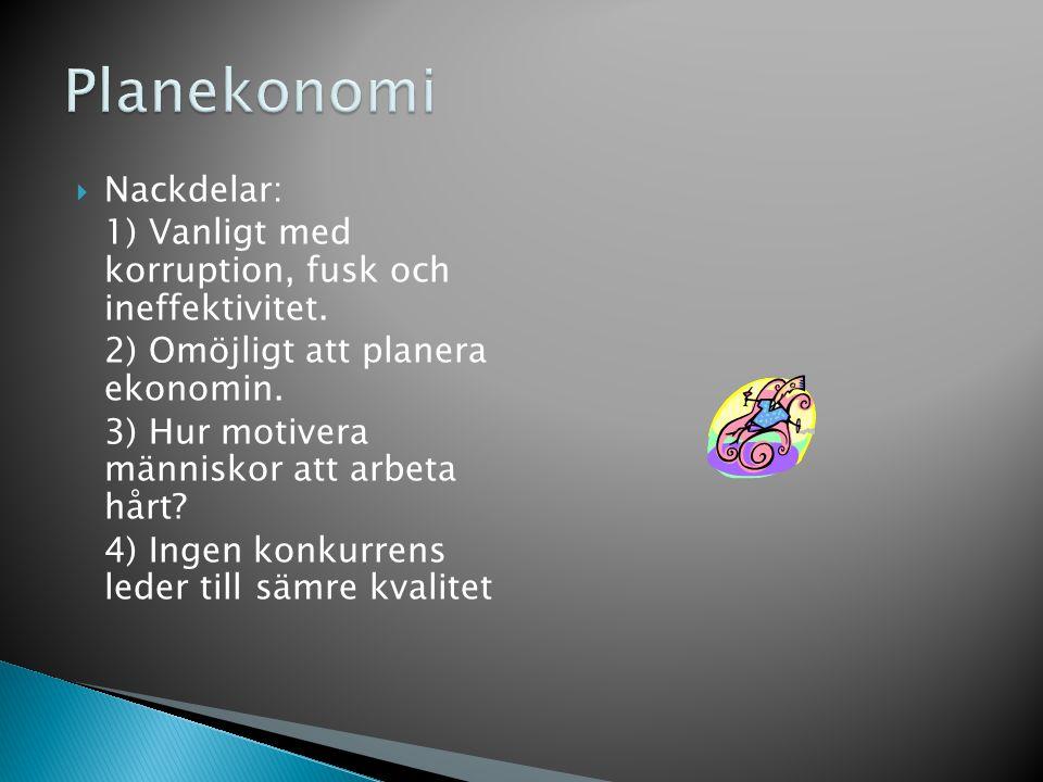 Planekonomi Nackdelar:
