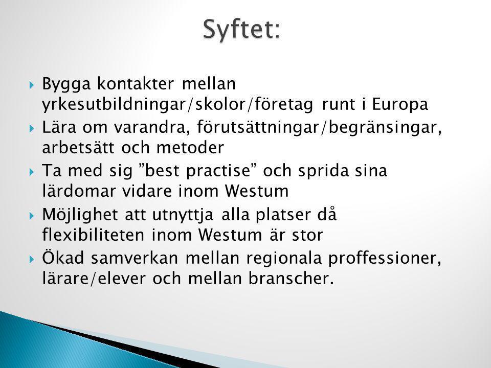 Syftet: Bygga kontakter mellan yrkesutbildningar/skolor/företag runt i Europa.