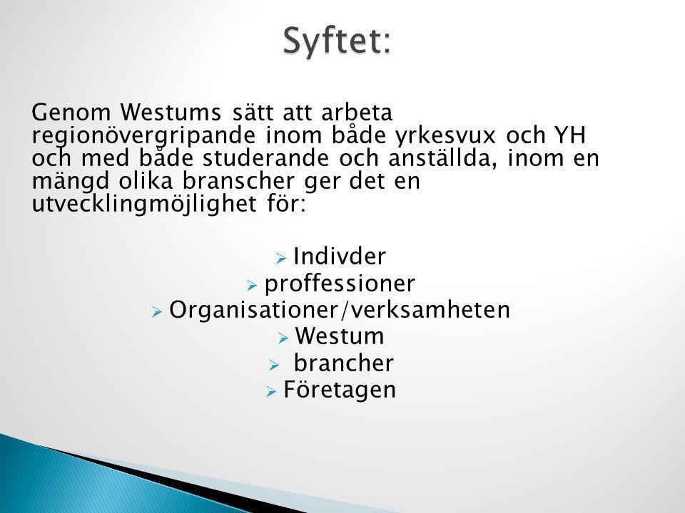 Organisationer/verksamheten