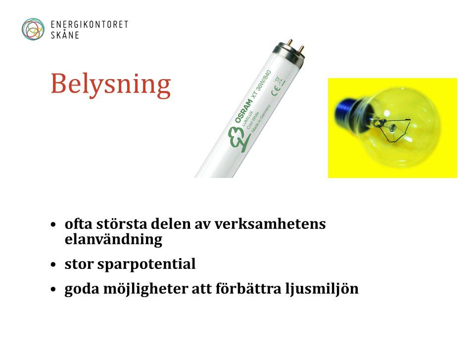 Belysning ofta största delen av verksamhetens elanvändning
