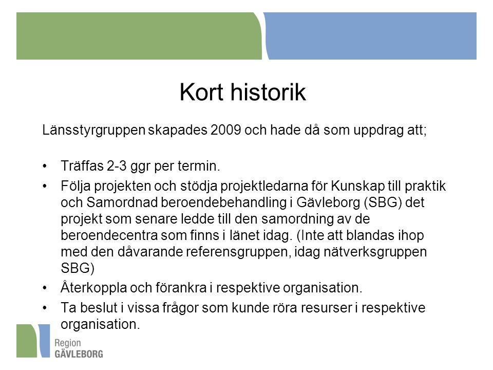 Kort historik Länsstyrgruppen skapades 2009 och hade då som uppdrag att; Träffas 2-3 ggr per termin.