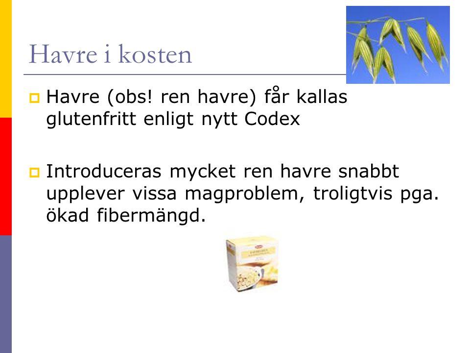 Havre i kosten Havre (obs! ren havre) får kallas glutenfritt enligt nytt Codex.