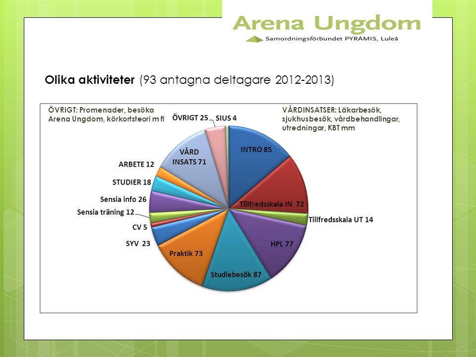 Olika aktiviteter (93 antagna deltagare 2012-2013)