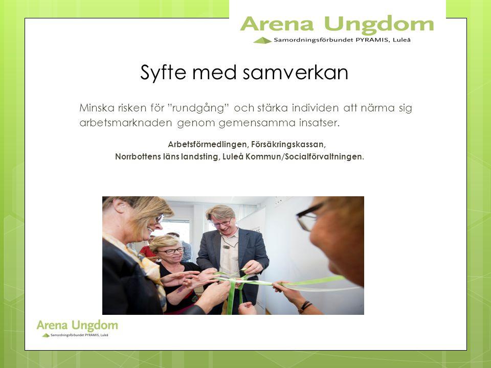 Norrbottens läns landsting, Luleå Kommun/Socialförvaltningen.