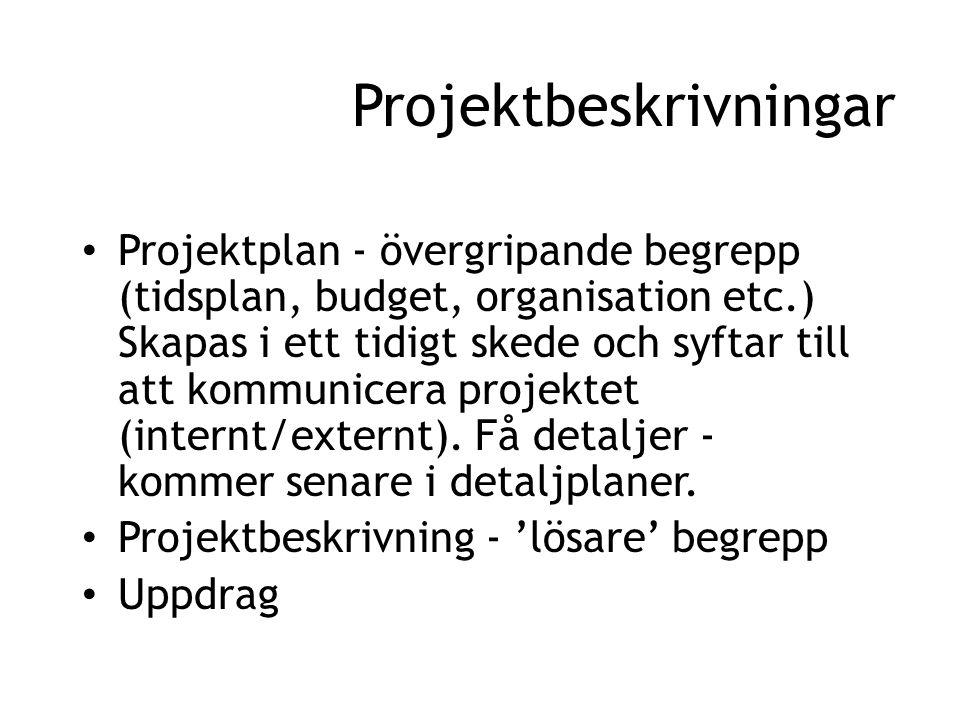Projektbeskrivningar