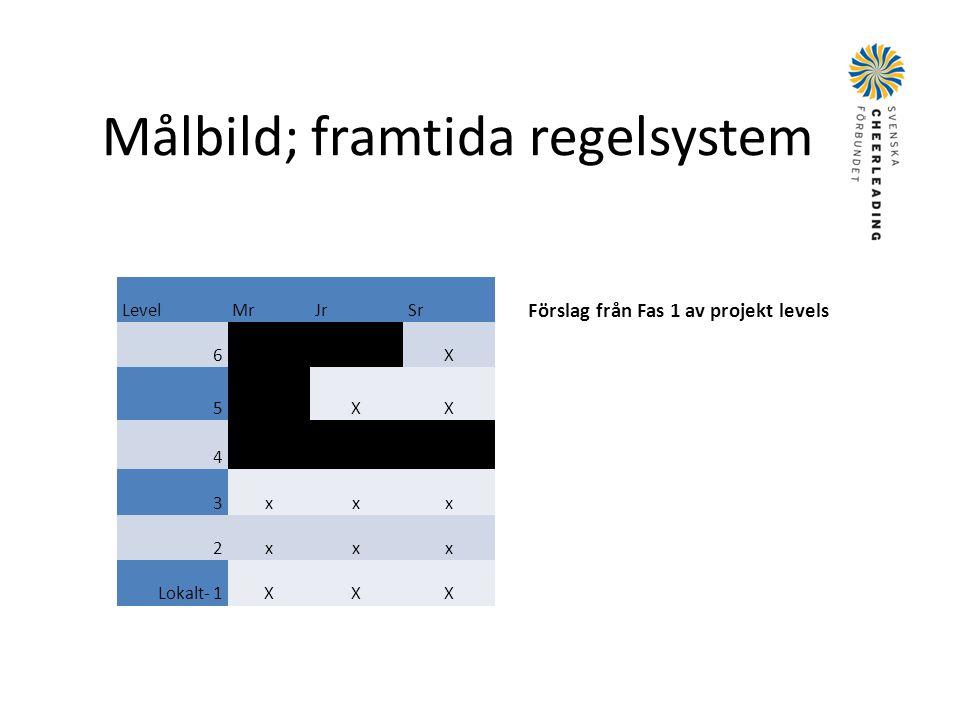 Målbild; framtida regelsystem