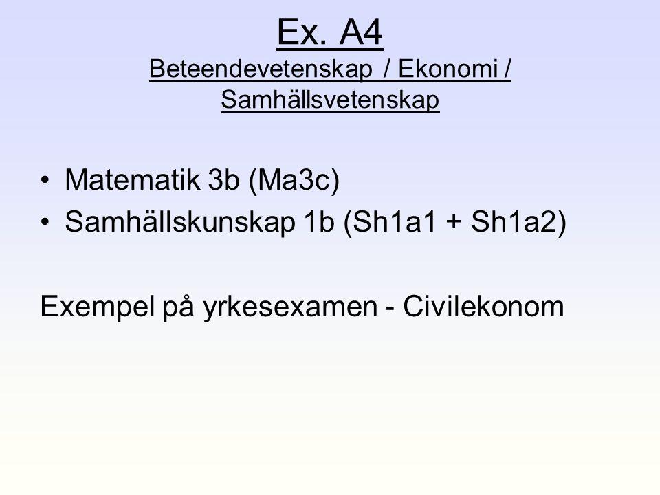 Ex. A4 Beteendevetenskap / Ekonomi / Samhällsvetenskap