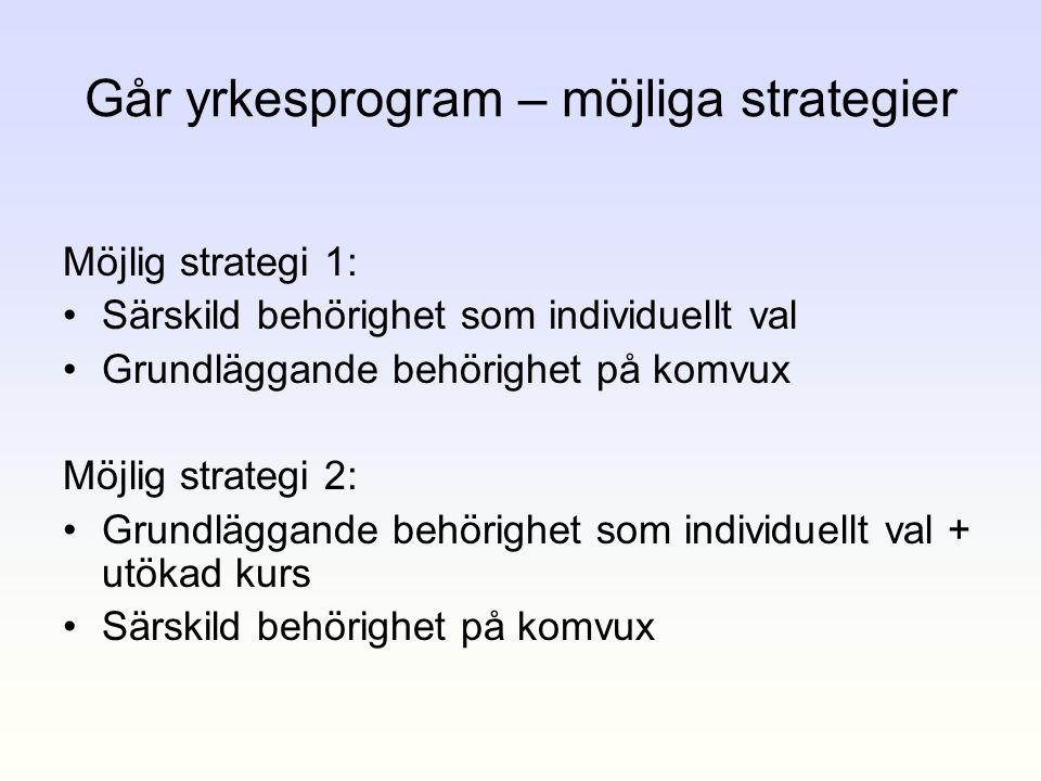 Går yrkesprogram – möjliga strategier