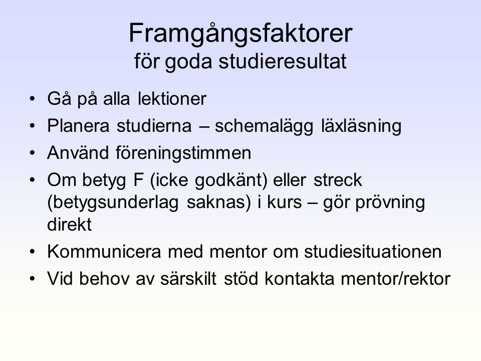Framgångsfaktorer för goda studieresultat
