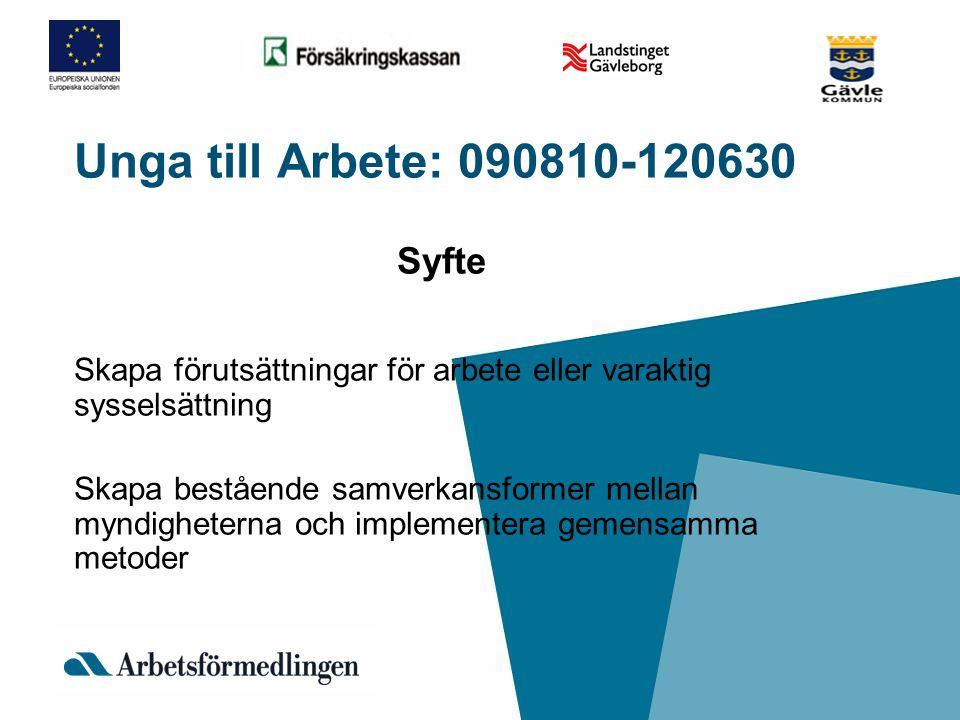 Unga till Arbete: 090810-120630 Syfte