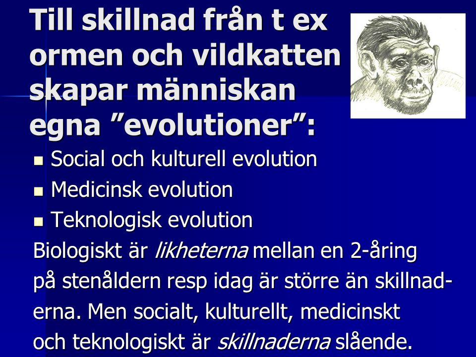 Till skillnad från t ex ormen och vildkatten skapar människan egna evolutioner :