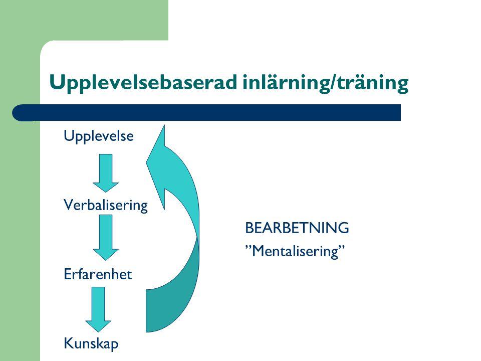 Upplevelsebaserad inlärning/träning