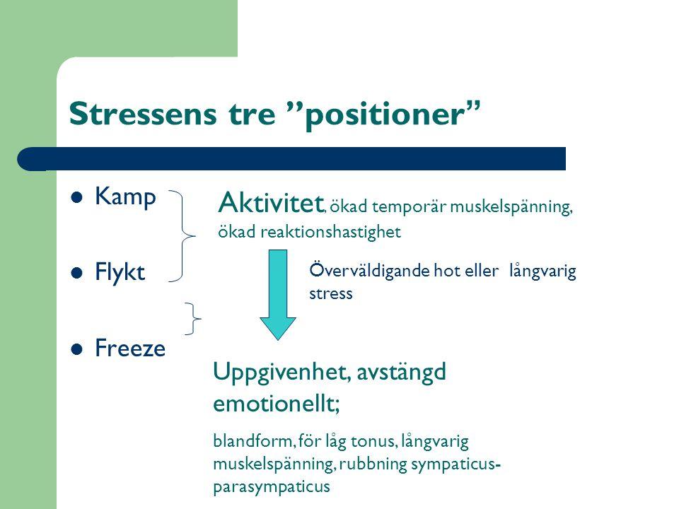 Stressens tre positioner