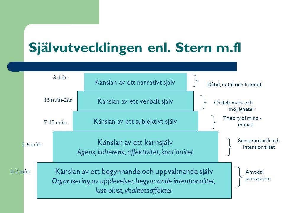 Självutvecklingen enl. Stern m.fl