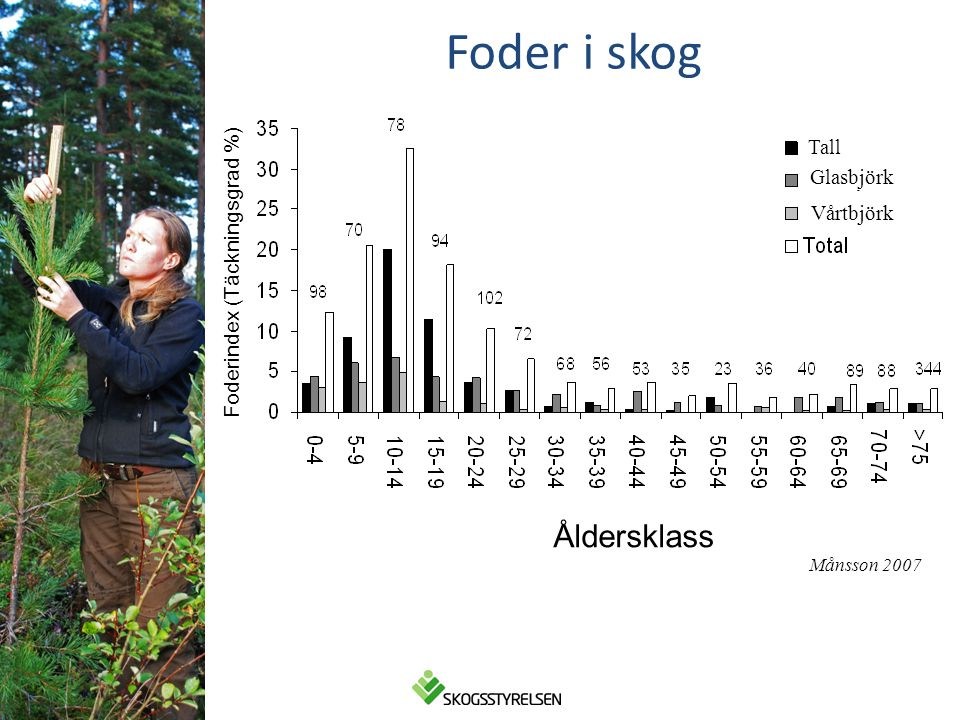 Foder i skog Åldersklass Tall Glasbjörk Foderindex (Täckningsgrad %)
