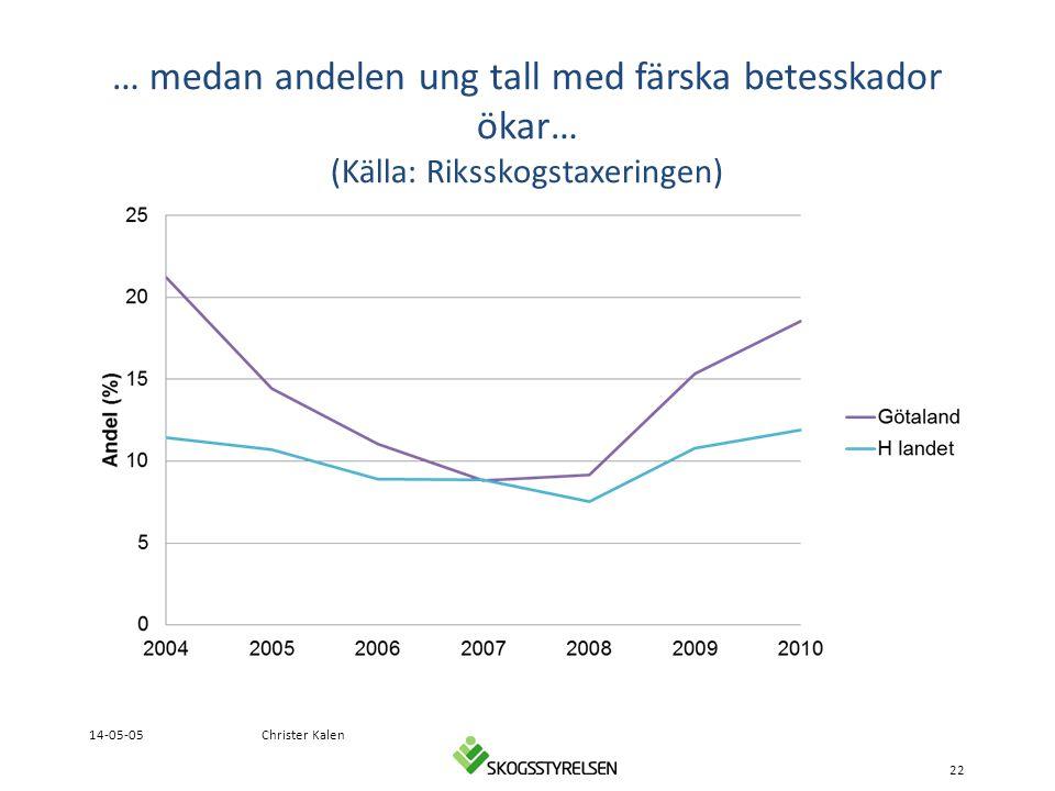 … medan andelen ung tall med färska betesskador ökar… (Källa: Riksskogstaxeringen)