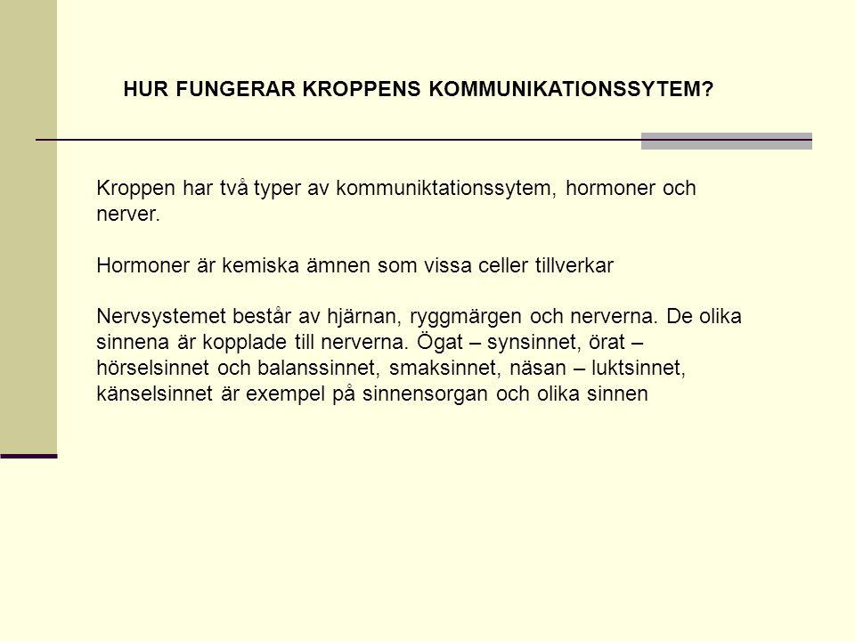 HUR FUNGERAR KROPPENS KOMMUNIKATIONSSYTEM