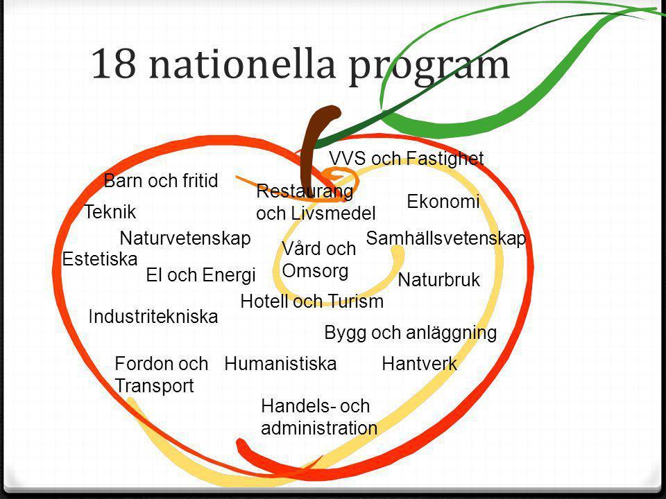 18 nationella program VVS och Fastighet Barn och fritid