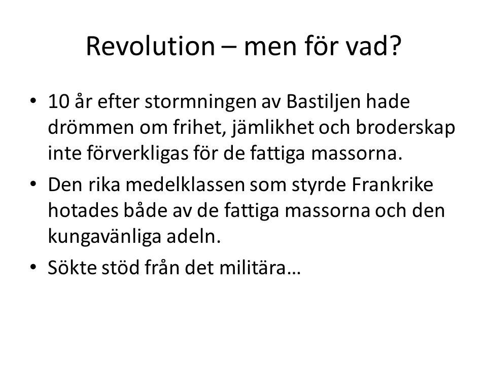 Revolution – men för vad