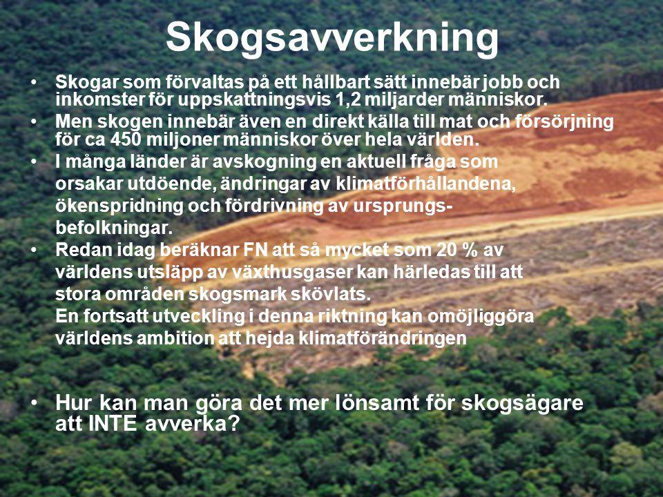 Skogsavverkning Skogar som förvaltas på ett hållbart sätt innebär jobb och inkomster för uppskattningsvis 1,2 miljarder människor.