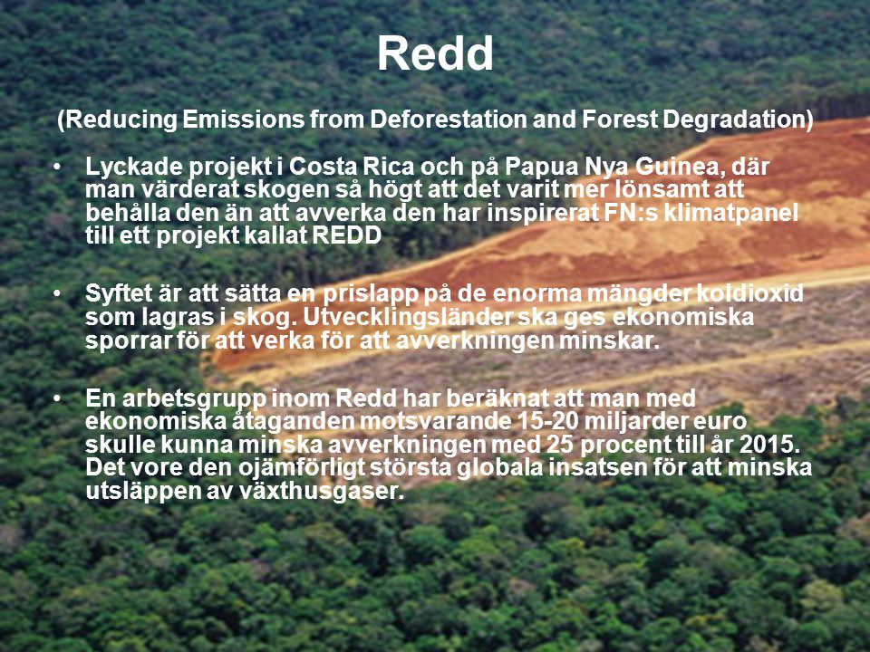 Redd (Reducing Emissions from Deforestation and Forest Degradation)