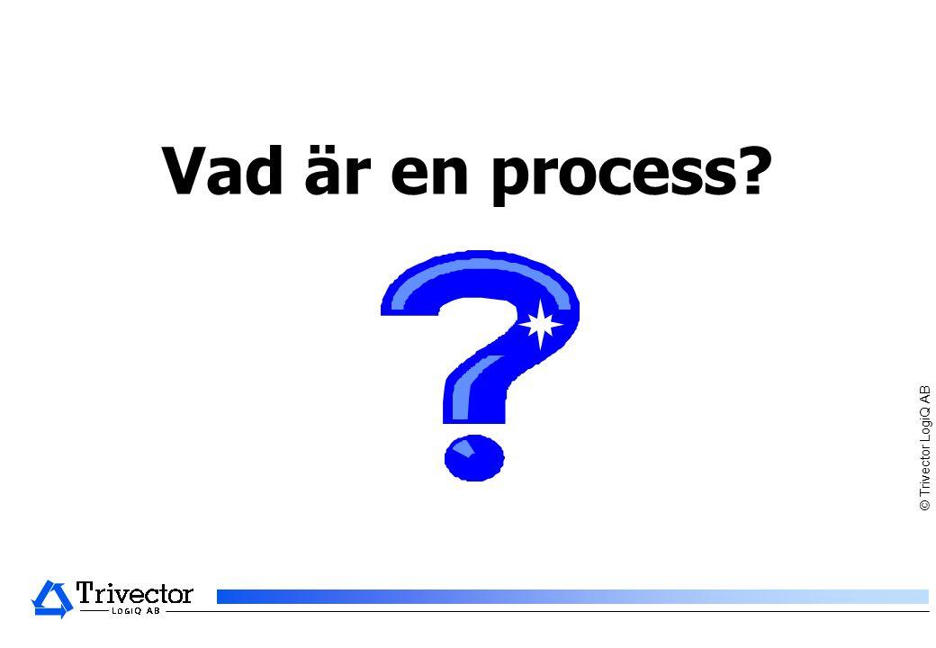 Vad är en process © Trivector LogiQ AB – Får ej kopieras
