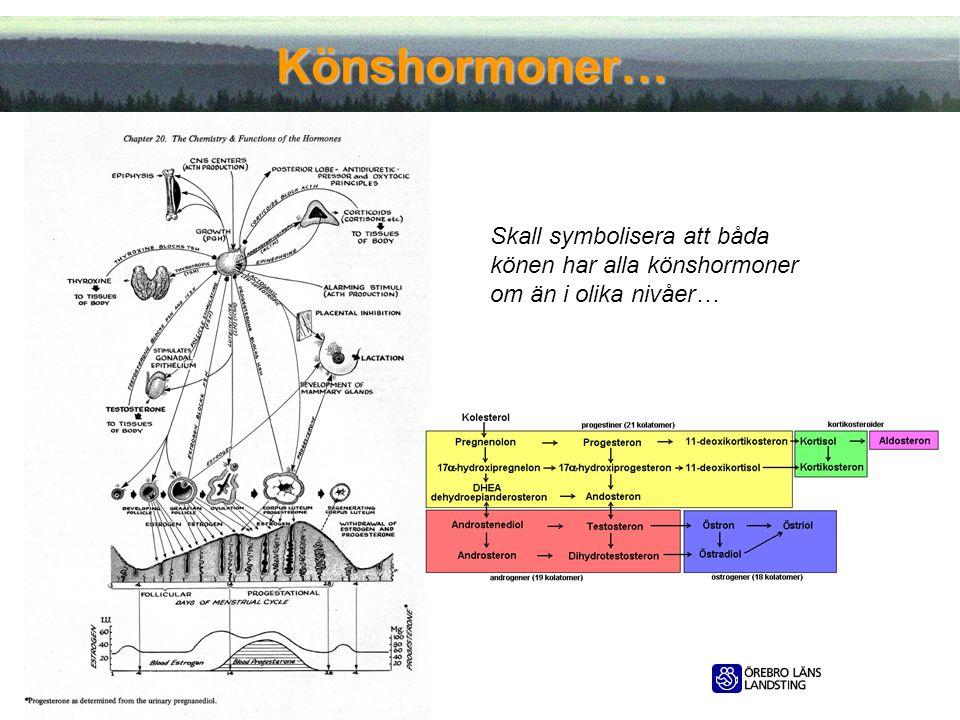 Könshormoner… Skall symbolisera att båda könen har alla könshormoner om än i olika nivåer… 2012-05-11.