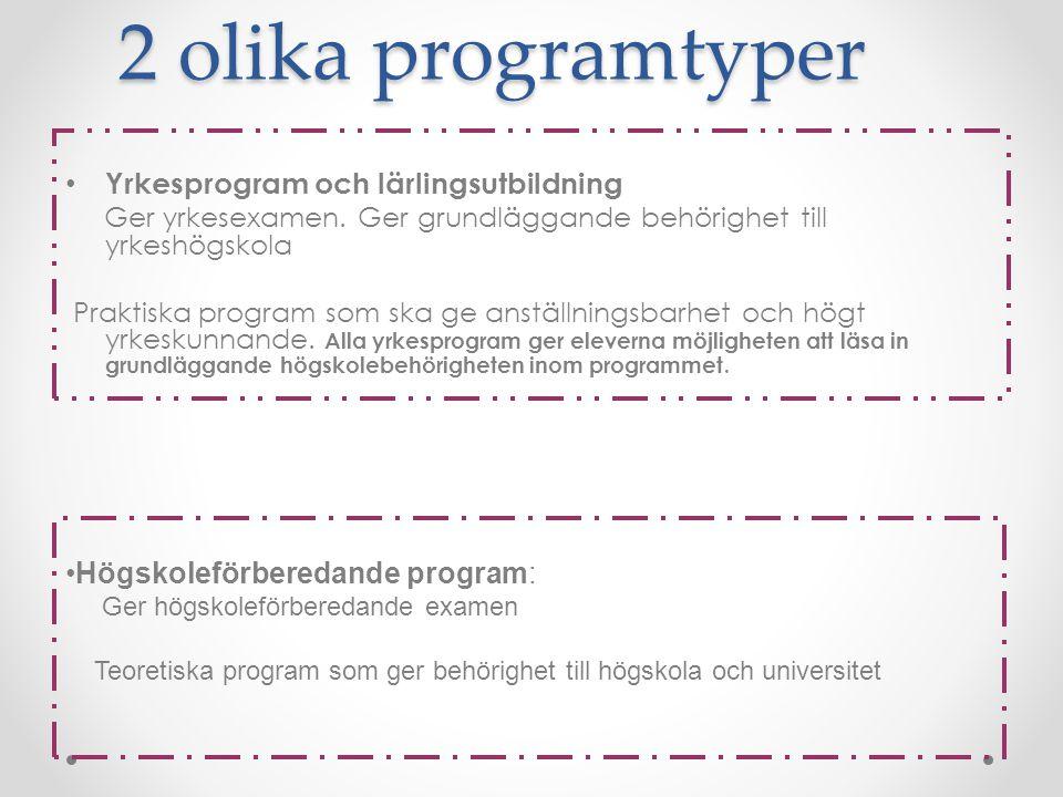2 olika programtyper Yrkesprogram och lärlingsutbildning