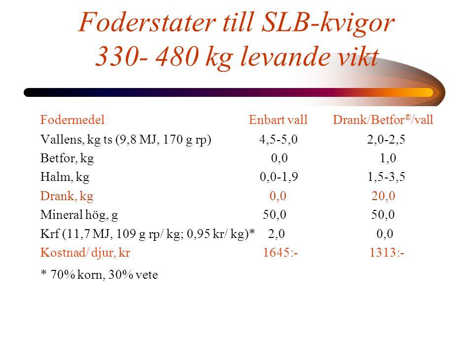 Foderstater till SLB-kvigor 330- 480 kg levande vikt