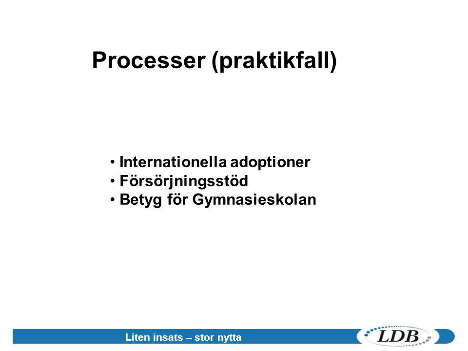Processer (praktikfall)