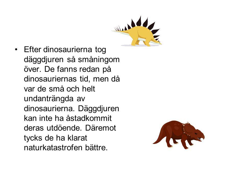 Efter dinosaurierna tog däggdjuren så småningom över