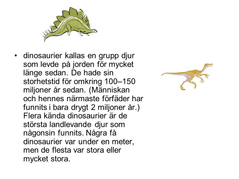 dinosaurier kallas en grupp djur som levde på jorden för mycket länge sedan.